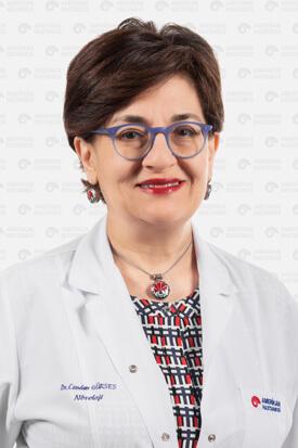 Prof. Dr. Candan Gürses